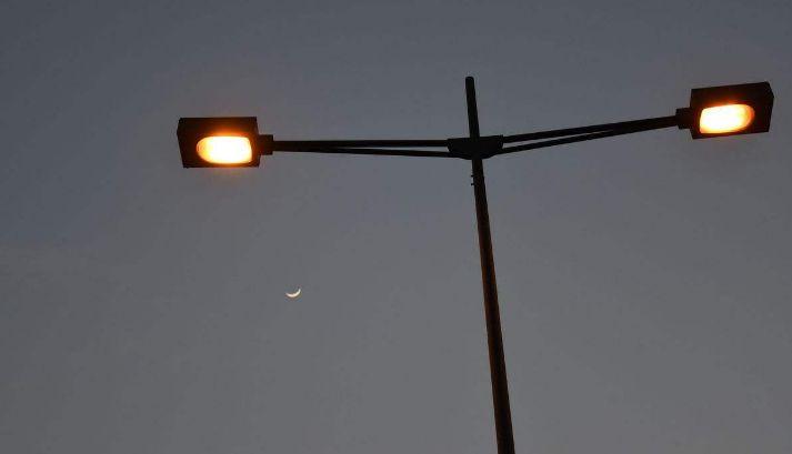 海口树倒路灯被吹坏  12345联动多部门解除隐患罗定
